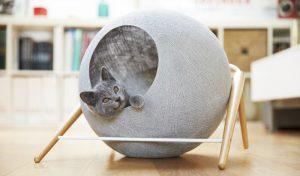 accesorios para gatos tiendanimal