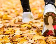 Deportes de otoño