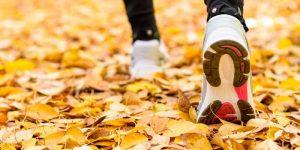 deportes de otoño en alavera