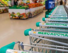 Productos Real fooding Mercadona