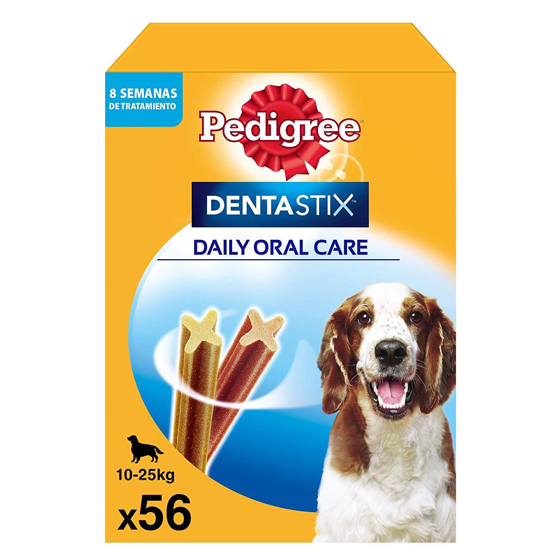 Cuidado salud dental perro