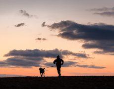 Practica el deporte con tu perro